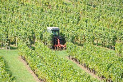 tracteur vignes chateau ferrasse castillon